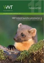 VWT newsletter