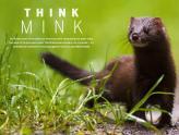 Portada BBC Wildlife